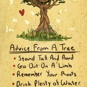 nature quotes - Google Search