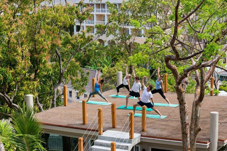 Luxury Hotels Innovate as Wellness Tourism Grows
