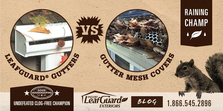LeafGuard Exteriors | Blog - LeafGuard Gutters vs. Gutter Mesh Covers - No two gutters are created equal. There's a big difference between high-quality seamless LeafGuard gutters and lower quality gutter mesh and covers.    http://www.guttersiowa.com/leafguard-seamless-gutters-vs-gutter-mesh-and-covers/