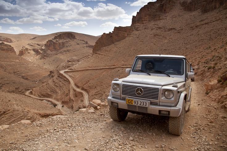 73 best images about mercedes benz gelandewagen on pinterest for Mercedes benz gelandewagen