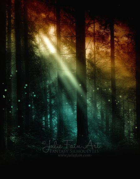 Radiance- Julie Fain