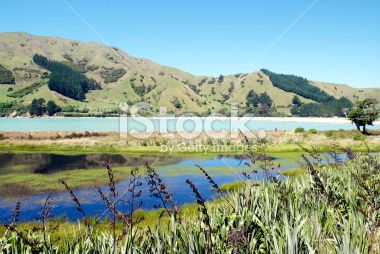 Seascape, Cable Bay, Nelson, New Zealand Royalty Free Stock Photo