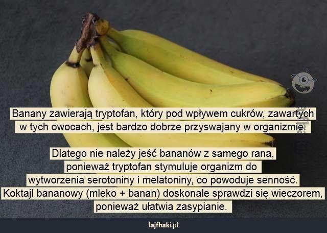 Kiedy jeść banany? - Banany zawierają tryptofan, który pod wpływem cukrów, zawartych  w tych owocach, jest bardzo dobrze przyswajany w organizmie.   Dlatego nie należy jeść bananów z samego rana, ponieważ tryptofan stymuluje organizm do  wytworzenia serotoniny i melatoniny, co powoduje senność. Koktajl bananowy (mleko + banan) doskonale sprawdzi się wieczorem, ponieważ ułatwia zasypianie.