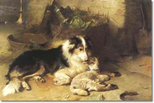 Collie and lamb...artist:walter hunt | Art and Photography ...