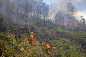 Pemadaman kebakaran hutan. (Ist)