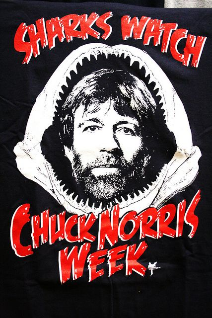 Sharks watch Chuck Norris Week!