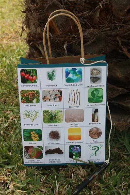 Hunting for outdoor items-picture of items on outside of bag-pen attached with string-could use this on field trips....etc...
