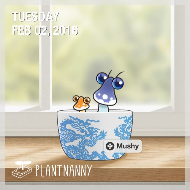 Say hello to my plant! It has absorbed 10,250 ml of water. Get yourself a plant at http://fourdesire.com/outer_link?url=http://itunes.apple.com/app/id590216134&l=en_ID&m=56B065BC