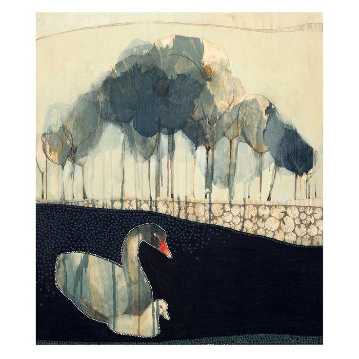 Early Morning Black Swan
