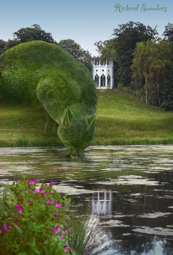 https://flic.kr/p/turd3W | Topiary  Cat Drinking from a lake | Even Topiary Cats need a drink at times. Preferably with a hint of fish. www.facebook.com/topiarycat