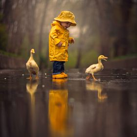 Imagine: Lucky ducks<3
