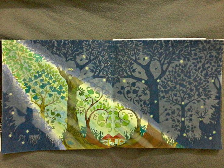 Original Joanna BasfordForest GardenColoring BooksAdult ColoringEnchanted Forest