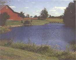 An Earth Pond Maintenance Guide Pond Maintenance Farm 640 x 480