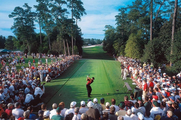 Expectacion - Tiger Woods (2001)