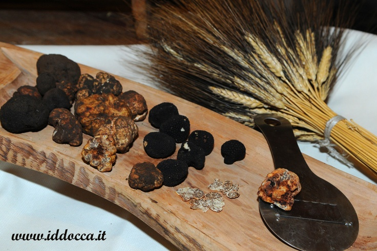 You can taste these typical Sardinian truffles! They are very good!