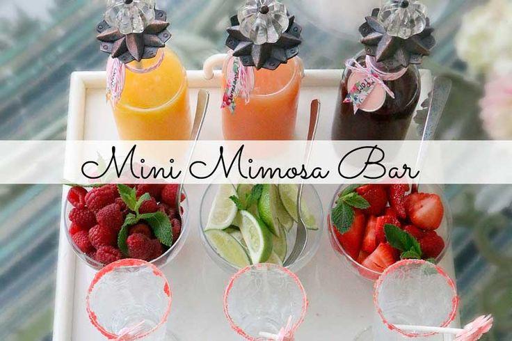 Мимоза бар: для тех, кто любит удевлять
