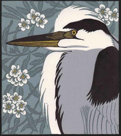 Robert Gillmor is an ornithologist, artist, author and editor
