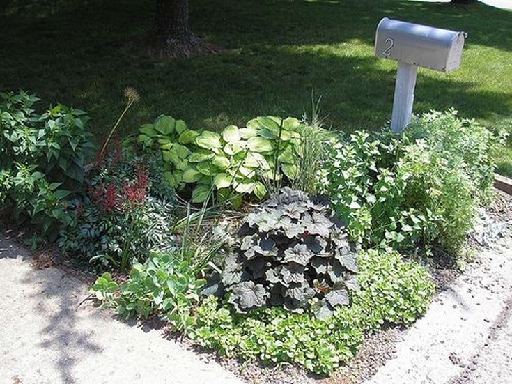 Flowering Mailbox Gardens Boost Curb Appeal