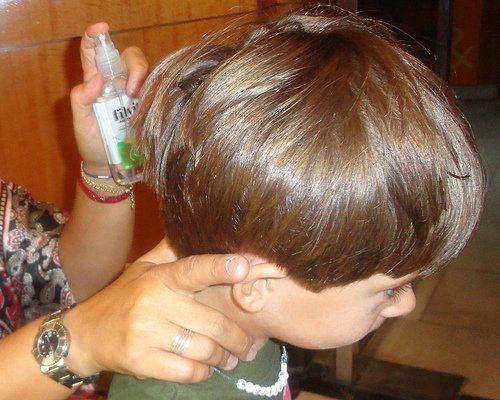 Cómo eliminar piojos y liendres de manera natural, tanto sea en niños como en adultos.