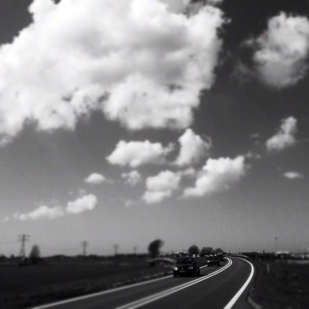 Friesland.