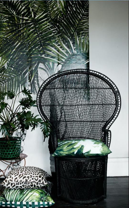 black rattan chair wish I still had mine but I left it in NM I think I GAVE it…