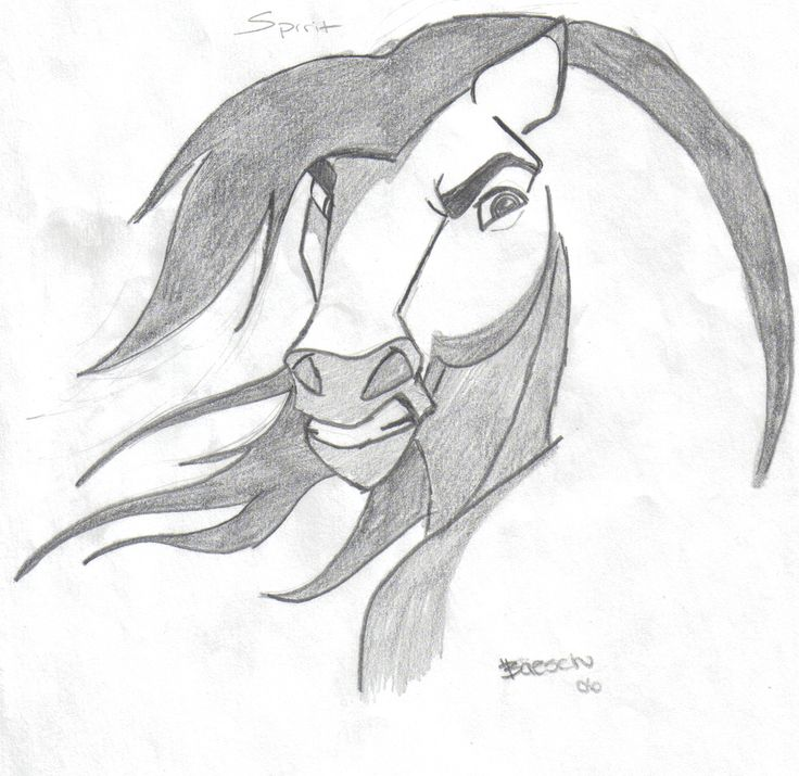 130 best images about cool pics on pinterest how to draw for How to draw cool creatures