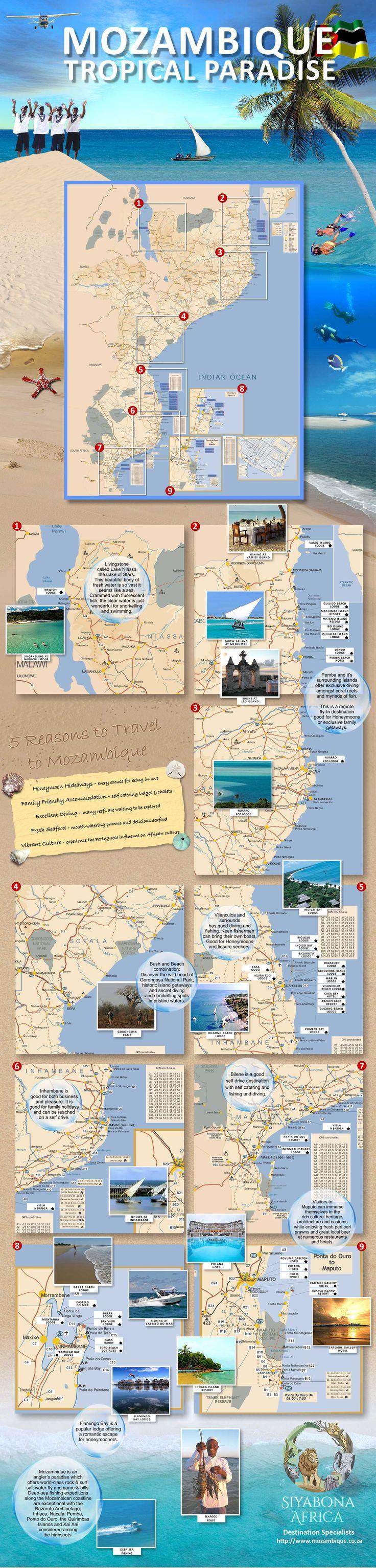 mozambique-infographic.jpg 1,440×5,999 pixels