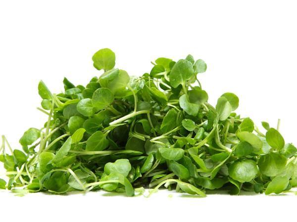 Vem kaj jem: Skoraj pozabljena rastlina, ki je najbolj zdrava med vso zelenjavo