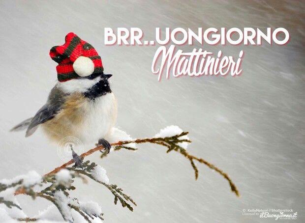 Brrrrrr. ......buongiorno