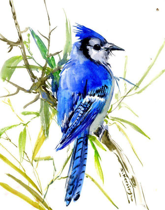 Blue Jay Painting Bird Art Blue Bird Painting Blue Jay Artwork