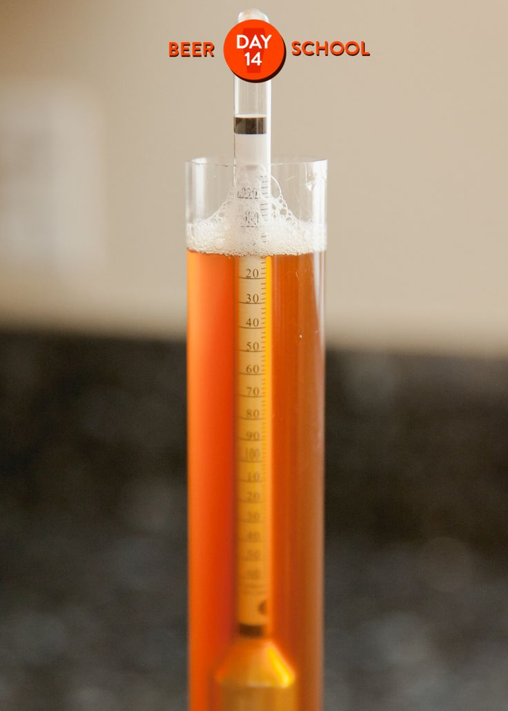 Today's topic: Learn how to check the alcohol in your beer The Kitchn's Beer School: 20 lessons, 7 assignments to brew your first 1-gallon batch of beer. Sign up & see all the assignments! The Kitchn's Beer School There's one thing we haven't talked very much about so far: the alcohol in your beer. Hop aromas and malt flavors are fantastic and all, but let's be honest here — the buzz that we get from a good beer is also part of why we do this! So where does the alcohol come from? How can...