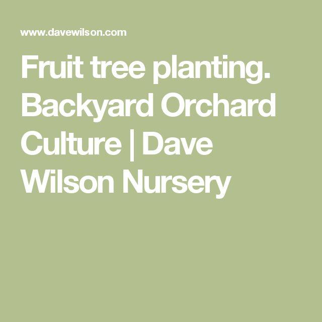 Fruit tree planting. Backyard Orchard Culture | Dave Wilson Nursery