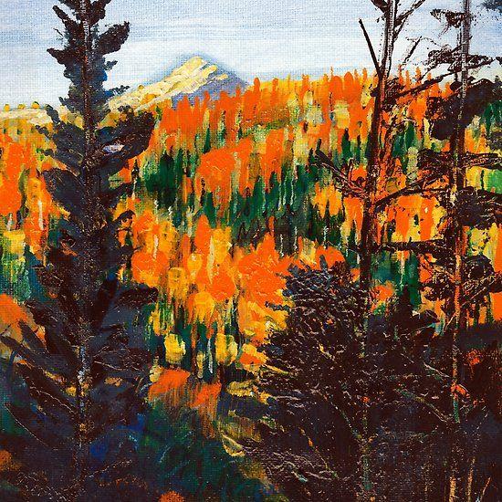 Forest Scene Invermere Canada