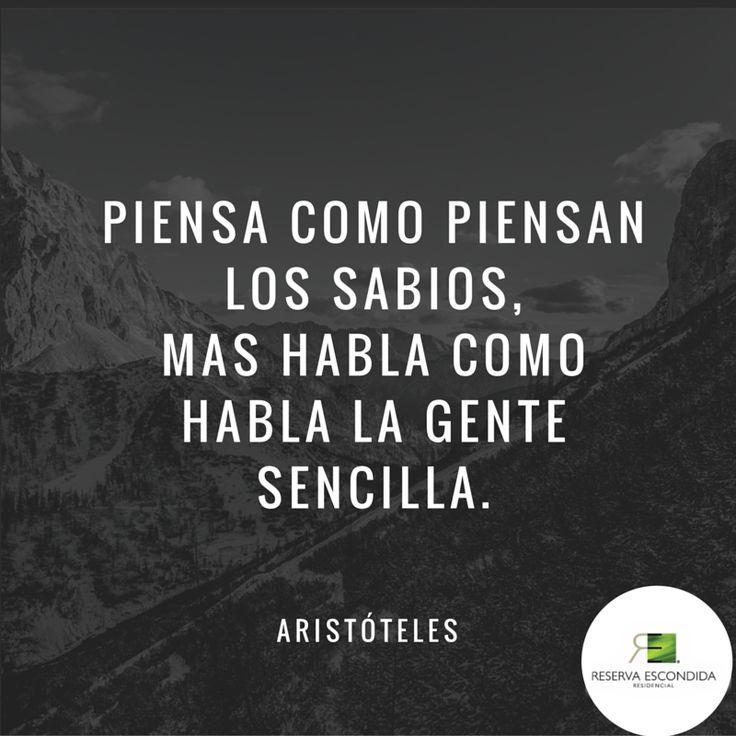 Piensa como piensan los sabios, mas habla como habla la gente sencilla. Aristóteles.  Actitud Reserva Escondida.  #Frase #Aristóteles #Citas