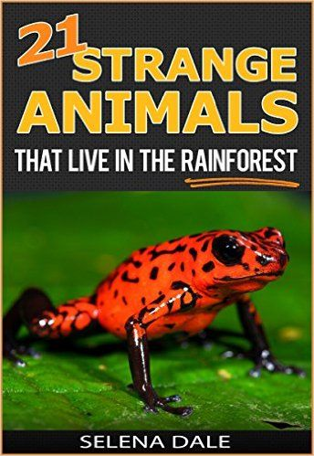 21 Strange Animals That Live In The Rainforest - Extraordinary Animal Photos & Facinating Fun Facts For Kids: Book 2 (Weird & Wonderful Animals) - Kindle edition by Selena Dale. Children Kindle eBooks @ Amazon.com.