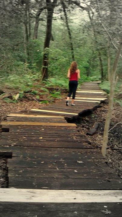 Trailrunning in Greenbelt National Park-  greenbelt md