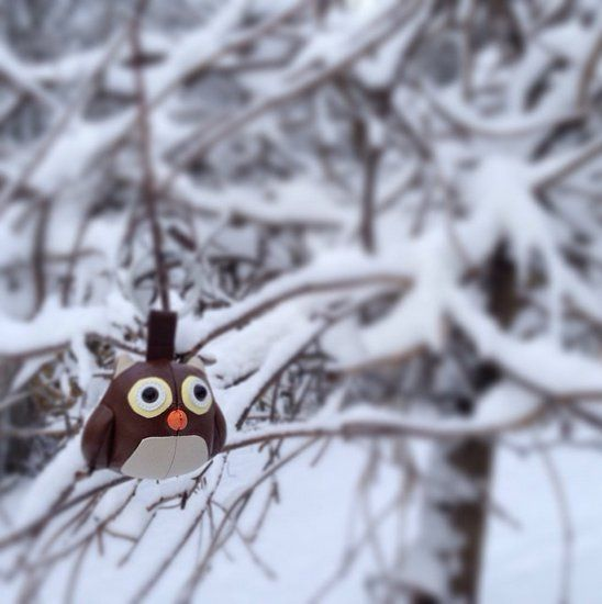 We just received a message that the very rare winter owl was caught on camera in tampere.