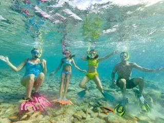 Aruba activities guide | Experience Caribbean