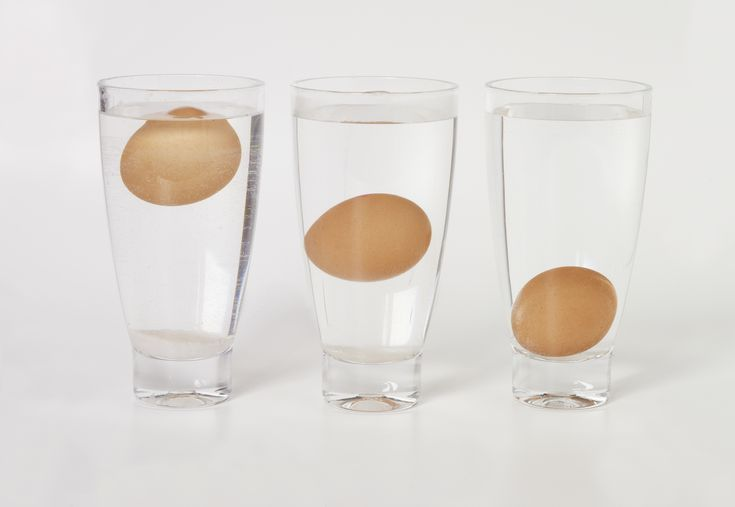 The Real Reason Rotten Eggs Float