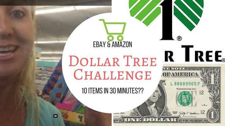 Dollar tree challenge can i find 10 profitable items to