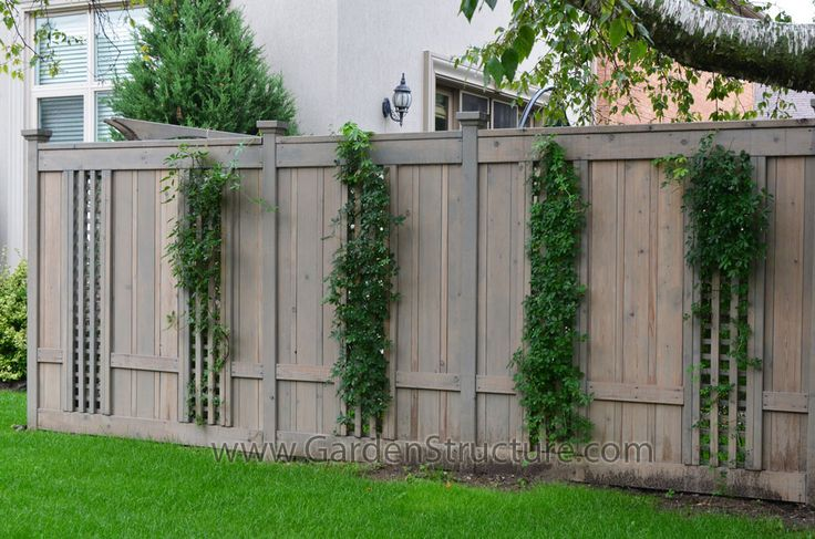unusual fence ideas | fence with inset lattice sections- Pre Finished Red Cedar