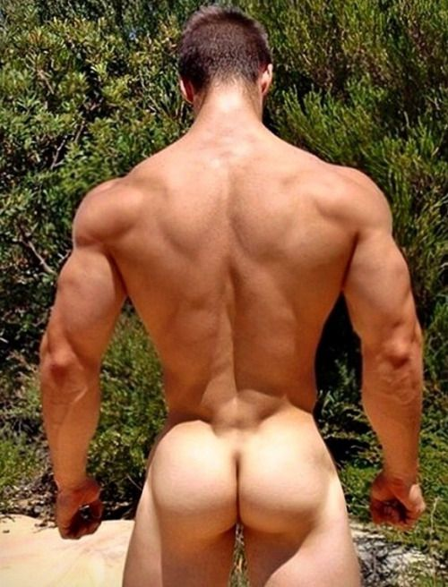 sexy muscle men nude