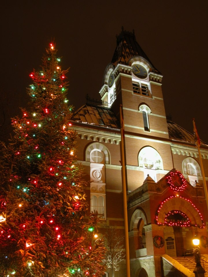 Fredericton City Hall Christmas tree