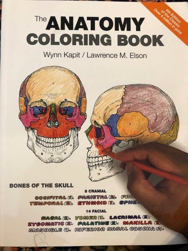 The Anatomy Coloring Book Awesome Anatomy Colouring Book Anatomy Coloring  Book, Coloring Books, Christmas Coloring Books