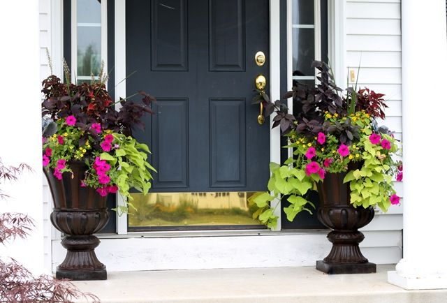plants for front door urns home decor and organization pinterest beautiful planters and decks. Black Bedroom Furniture Sets. Home Design Ideas