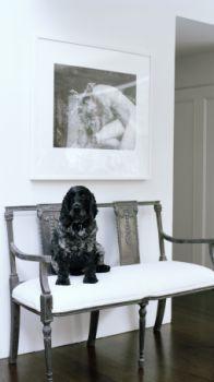 Australian designer Colette Dinnigan's foyer. The photograph is by Sally Bierman. (pic source: Elle Decor magazine)