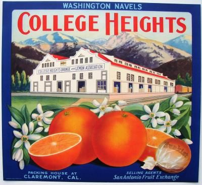 crate labels | COLLEGE HEIGHTS Vintage Claremont Orange Crate Label (O516)
