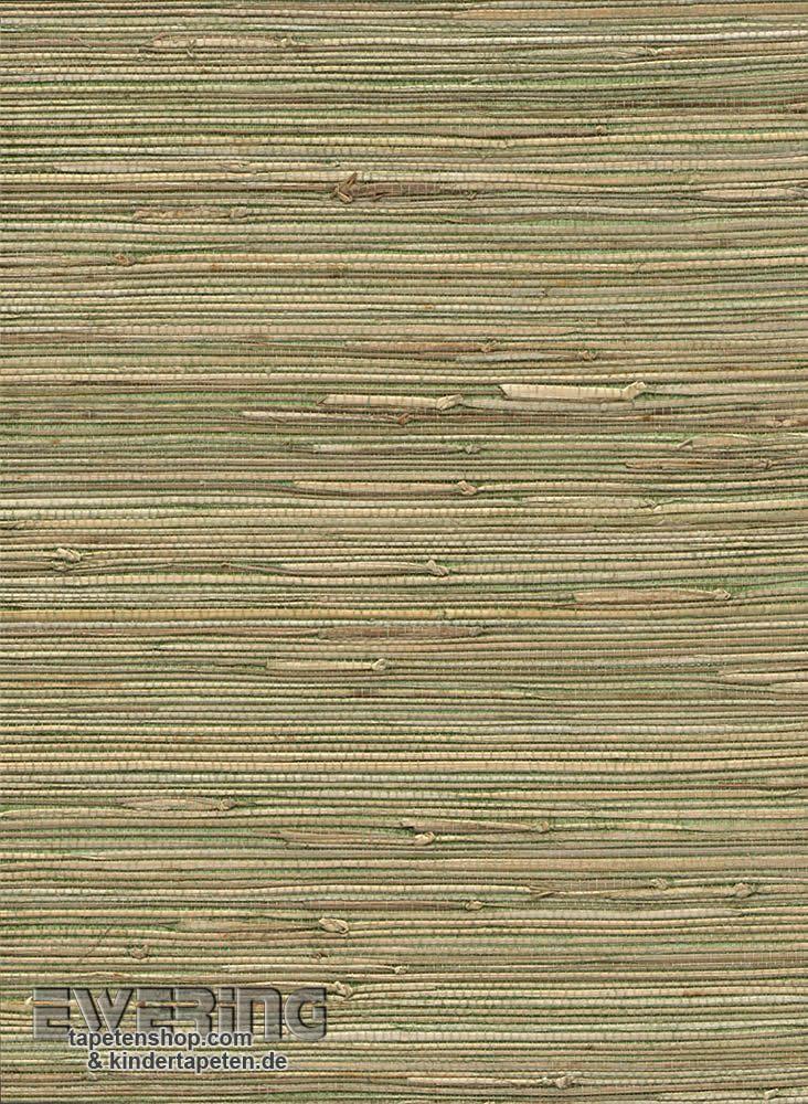 49 besten vista 5 von rasch textil tapeten mit for Tapete streichen