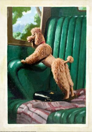 ladybird book illustration of a poodle. from ladybirdprints.com