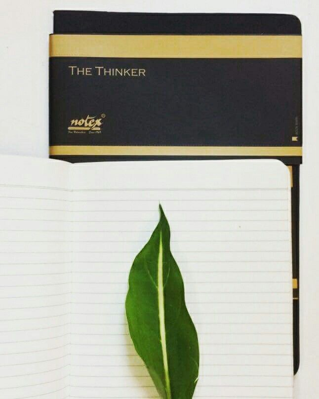 #notex Felt notebook is the perfect companion for every adventure. www.notex.co.in  Fine Notemakers...Since 1969 #mynotex #thinker #adventure #write #bujo #draw #sketch #creative #innovative #journal #journallove #notebook #stationeryaddict #write